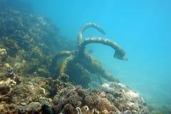 Ancla bajo el mar Imagen de archivo libre de regalías