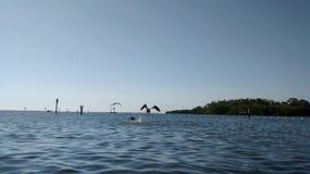 Anclote plaża Obrazy Stock