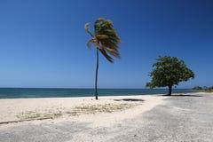 Ancon Beach, Trinidad Cuba. Tropical, Ancon Beach in Trinidad Cuba with palm tree Royalty Free Stock Images