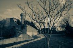 Ancona fyr Arkivbild