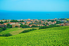 Ancona, Italy. Landscape with sunflowers field and small town on the sea coast. Ancona, Italy stock image