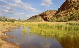 Ancora acqua vicino a Glen Helen Gorge fotografia stock libera da diritti