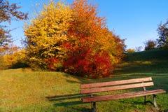 Ancora un altra scena di autunno Fotografia Stock