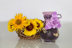 Ancora-vita, composizione dei colori e vaso Immagine Stock