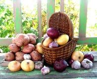 Ancora vita con frutta Fotografie Stock Libere da Diritti