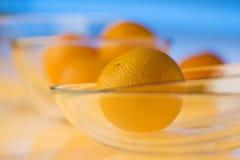 Ancora vita con gli aranci Fotografie Stock Libere da Diritti