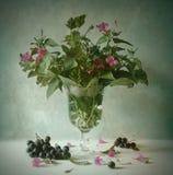 Ancora vita con i fiori Immagini Stock