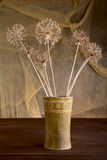 Ancora-vita con i fiori asciutti in vaso Fotografia Stock