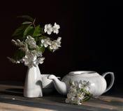 Ancora vita con i fiori della ciliegia Fotografie Stock Libere da Diritti