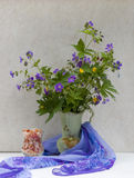 Ancora vita con i fiori selvaggi della sorgente Immagini Stock Libere da Diritti