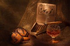 Ancora-vita con il sigaro ed il cognac Fotografia Stock Libera da Diritti