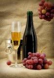 Ancora vita con la bottiglia e la frutta del champagne Immagini Stock Libere da Diritti
