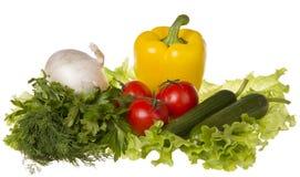 Ancora vita con la verdura fresca Immagini Stock Libere da Diritti