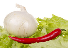 Ancora vita con la verdura fresca Fotografie Stock