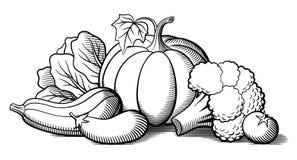 Ancora-vita con le verdure Zucca, zucchini Fotografia Stock
