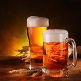 Ancora vita con una birra Immagine Stock