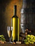 Ancora vita con vino Fotografia Stock Libera da Diritti