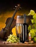 Ancora vita con vino ed il violino Fotografia Stock Libera da Diritti