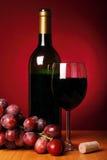 Ancora-vita con vino rosso Fotografia Stock Libera da Diritti
