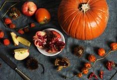 Ancora vita d'autunno Fotografia Stock