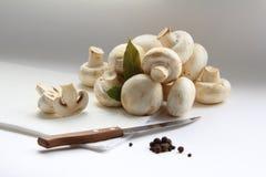 Ancora vita dei funghi Fotografia Stock