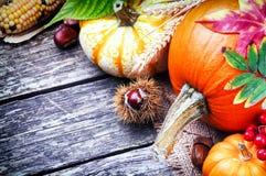 Ancora-vita di autunno con le zucche Fotografie Stock Libere da Diritti