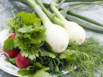 Ancora-vita di verdure Immagine Stock