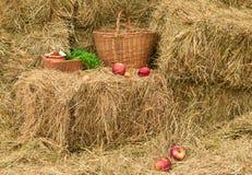 Ancora-vita rurale Fotografie Stock