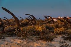 Ancore sulla spiaggia Algarve Portogallo di Barril immagini stock