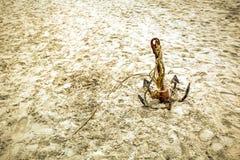 Ancre dans le sable photos libres de droits