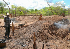 ANCUABE, MOZAMBIQUE - 5 DESEMBER 2008: Producción de BU del carbón de leña Imágenes de archivo libres de regalías