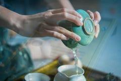 Anda av grönt te Fotografering för Bildbyråer