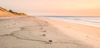 Anda esta maneira na areia fotos de stock royalty free