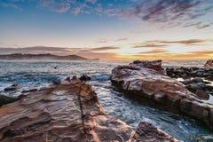 Anda som lyfter Rocky Sunrise Seascape royaltyfria bilder