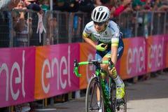 Andalo, Италия 24-ое мая 2016; Esteban Chaves, профессиональный велосипедист, проходит финишную черту этапа Стоковая Фотография RF