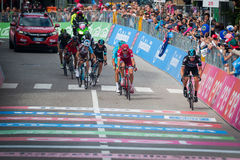 Andalo, Italy May 24, 2016; A group of professional cyclists passes the finish line of the stage. Royalty Free Stock Photography