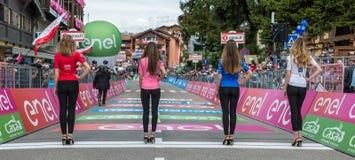 Andalo, Włochy Maj 24, 2016; Parada chybienie z bydło wycieczka turysyczna Włochy w 2016 Zdjęcie Stock
