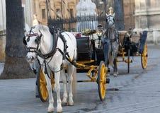 Andalou de chariot photographie stock libre de droits