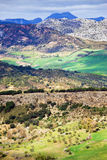 Andalucia in Spain Stock Image