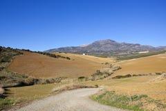 Andalucian-Ackerlandlandschaft mit Bergen Stockbild