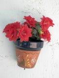 Andalucian flowerpot Stock Photos