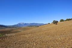 Andalucian-Landschaft mit anbaufähigem Ackerland und entfernten Bergen Lizenzfreie Stockfotografie