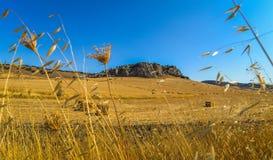Andalucianlandschap - Ronda - Spanje stock afbeelding