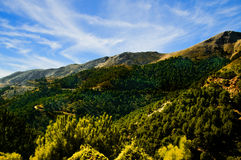 Andalusia landscape Royalty Free Stock Images