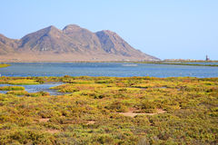 Andalusia, landscape. Salt flats Cabo de Gata Royalty Free Stock Photo