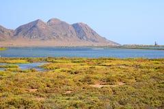 Andalusia, landschap. Zoute vlakten Cabo DE Gata Royalty-vrije Stock Foto