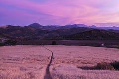 Andalusia panorama på solnedgången Arkivbilder