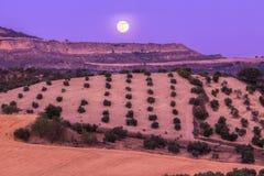 Andalusia panorama på solnedgången Arkivfoto