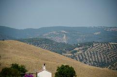 Andalusia schilderachtig heuvelig plattelandspanorama met olijfbomenbosjes op gecultiveerde gebieden in zuidelijk Spanje, Malaga stock foto