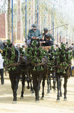 Andalusia, Spain, carriage of horses Stock Photography